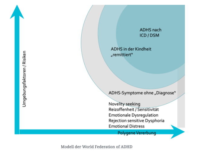 ADHS-Modell